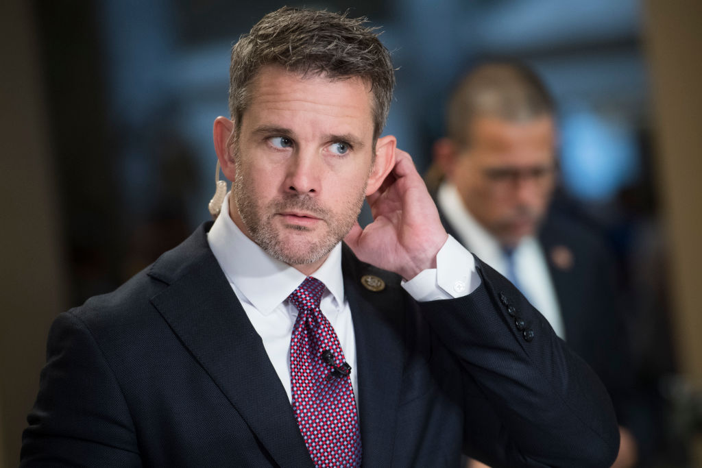 Adam Kinzinger and Anthony Brown